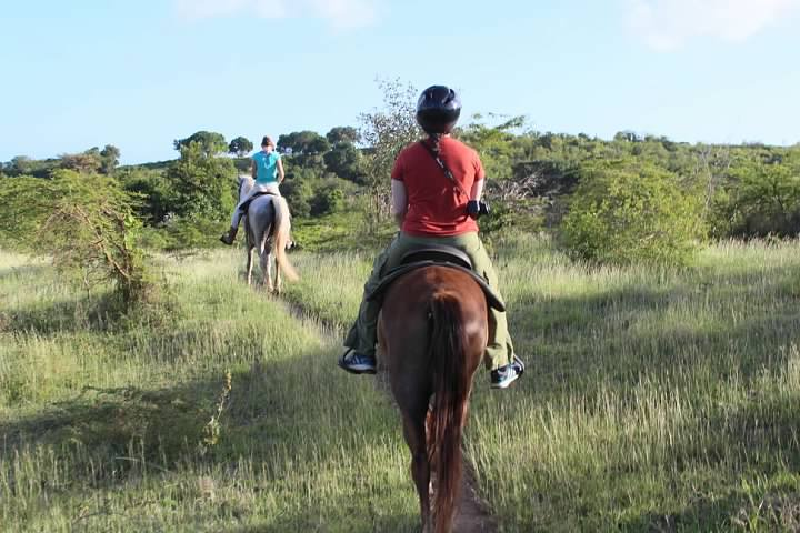 Horseback riding in the hills northwest of Esperanza