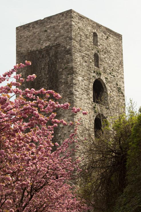 Torre di San Vitale