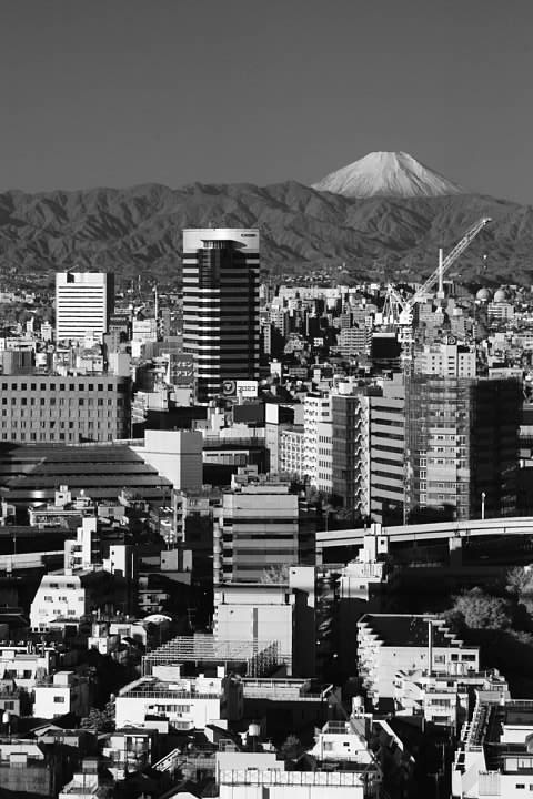 View of Mt. Fuji from our hotel in Shinjuku, Tokyo