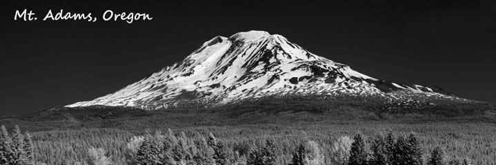 Mt Adams Banner