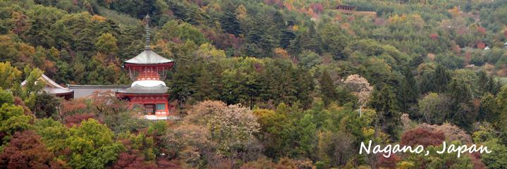 Nagano Banner Small