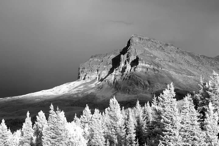 Wynn Mountain in Glacier National Park in infrared