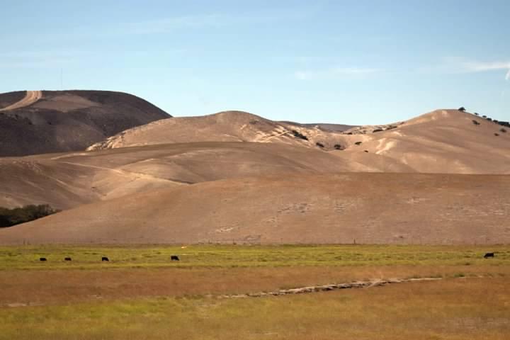 Casmalia Hills