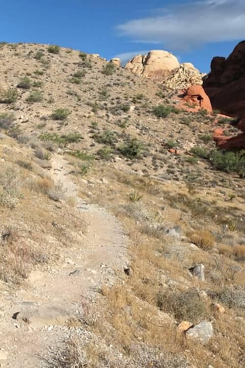 Calico Hills Trail