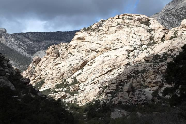 White in Red Rock