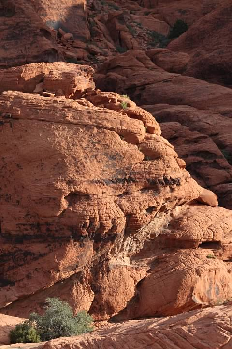 Aztec Sandstone