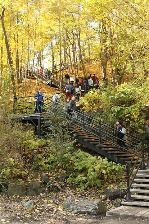 Staircases on Mont Royal
