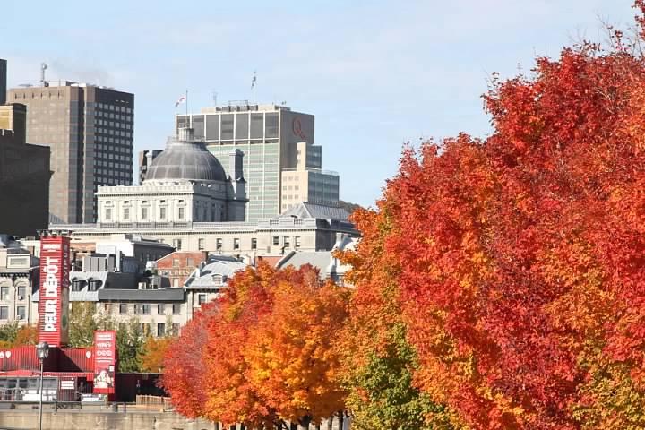 Colors of Vieux-Port de Montréal