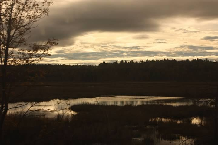 Lake in upstate New York seen from the train. Lowell Silverman photography, 2011