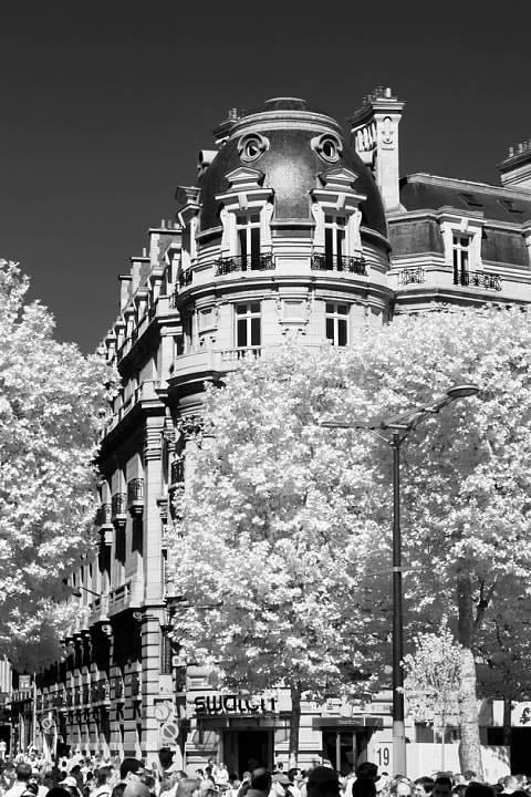 Along l'avenue des Champs-Élysées