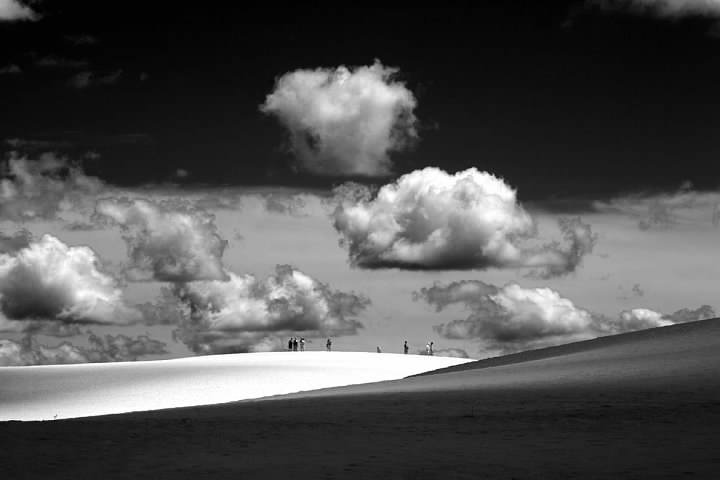Jockey Ridge in the Outer Banks has the highest dunes in the eastern United States. Infrared. Lowell Silverman photography, 2011