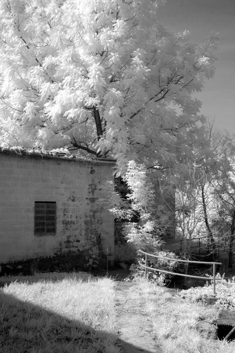 June 2007, infrared