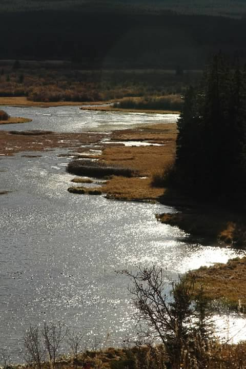 9 Vermilion Lakes