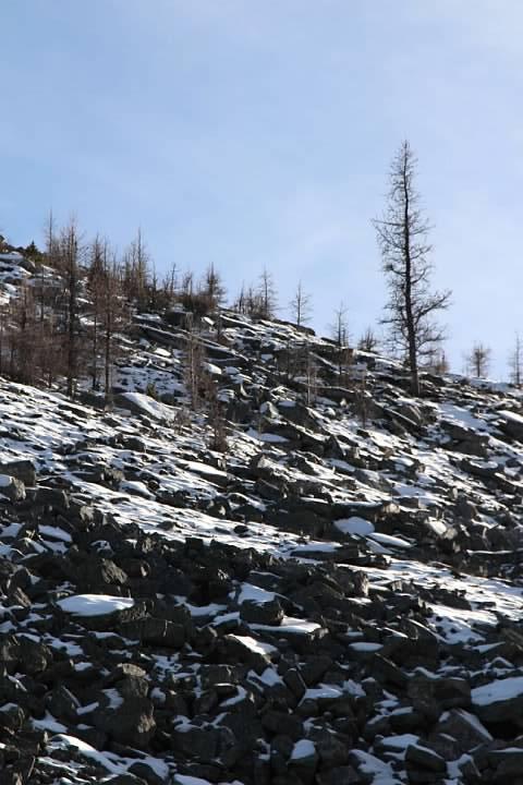 12 Snow zone