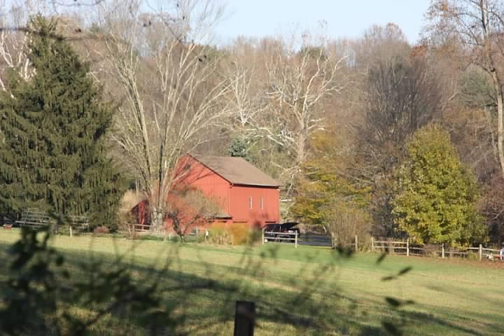 7 Farm