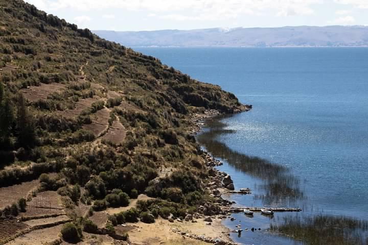 18 Lake and Reeds
