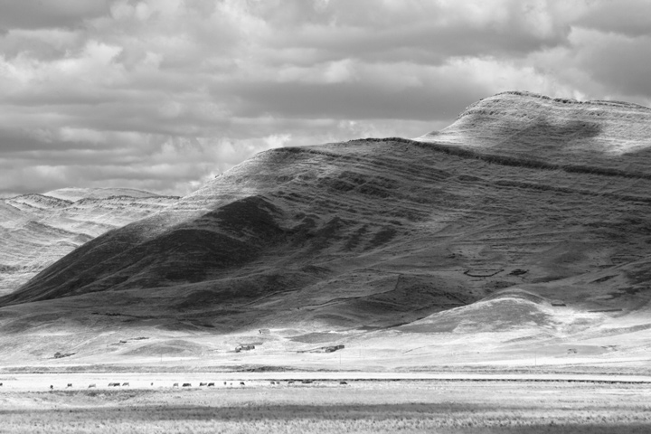 AndeanExplorerStarkLandscape